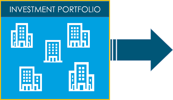 Investment Portfolio - Barriers to growth graphic