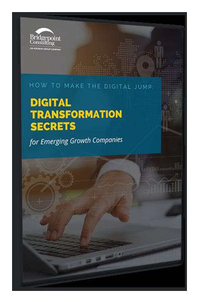 eBook: How to make the digital jump: Digital transformation secrets for emerging growth companies