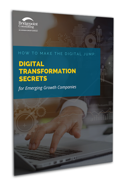 eBook: How to make the digital jump: Digital transformation secrets for emerging growth companies